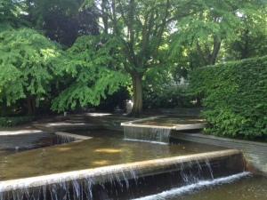 Zoo1_Wasser