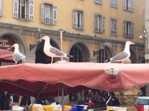 Fischmarkt_Nizza
